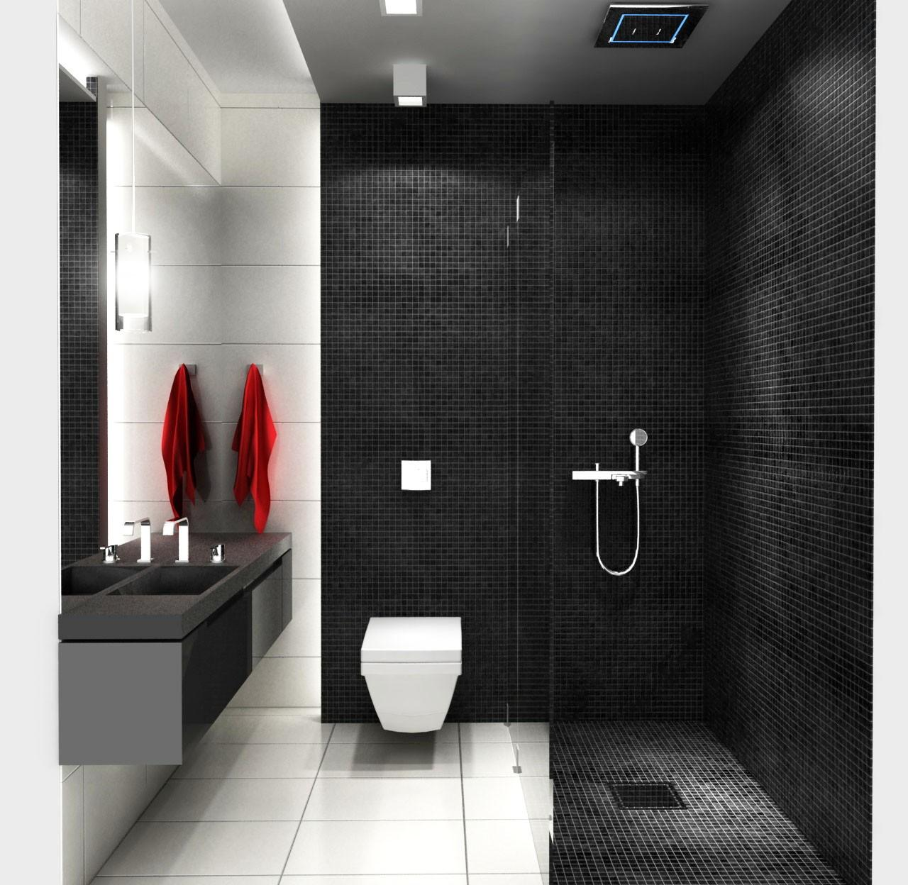 Baños Con Ducha Negra:Black and White Small Bathroom Ideas