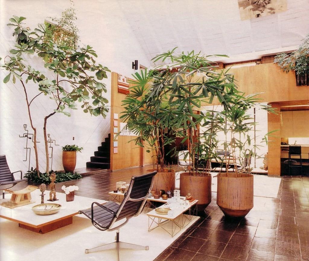 Todo un jardín botánico en el salón.