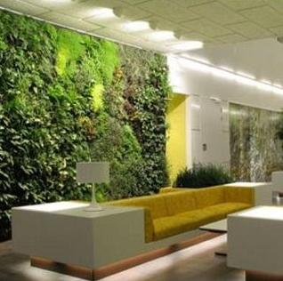 Jardines verticales en el interior for Jardines verticales para interiores