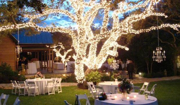 Iluminar una fiesta en el jard n for Iluminacion exterior para arboles