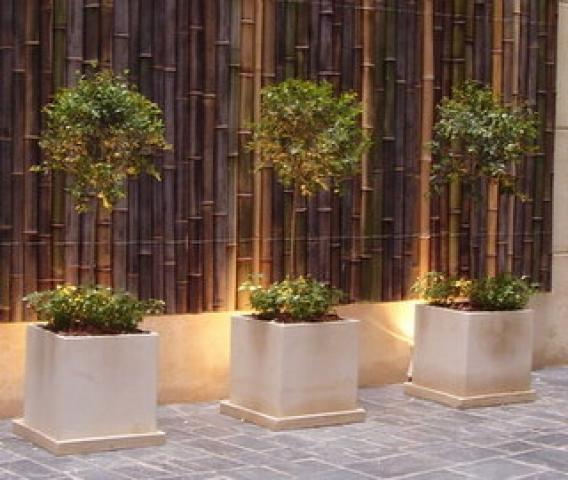 el bamb y sus mil usos decorativos