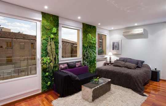 Jardin Vertical Baño:Un par de jardines verticales situados entre ventanas