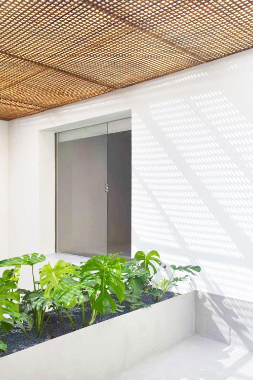 Una celosía, con una trama de cuadrícula, tamiza la fuerte luz solar que recibe este patio interior.