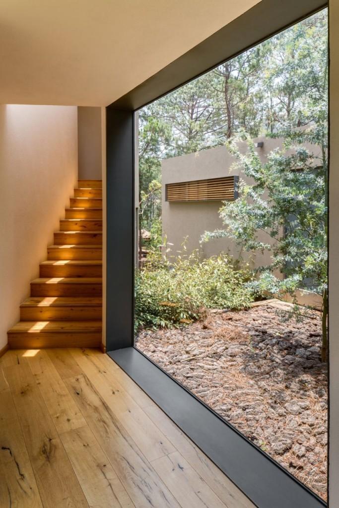 Los espacios acristalados se suceden, para integrar el interior al bosque.